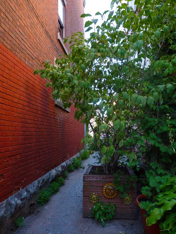 Ruelle Champetre Montreal