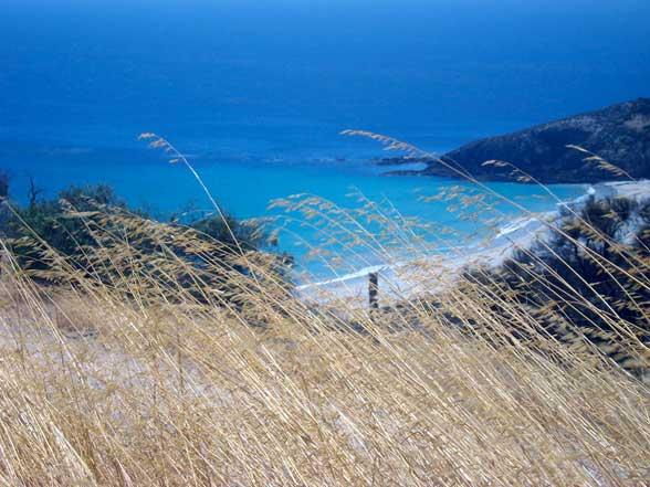 Kangaroo Island Plage