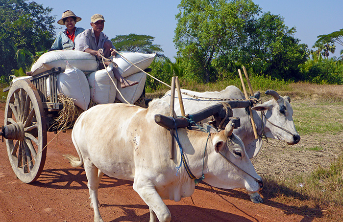 Paysages Bilu Guyn Birmanie