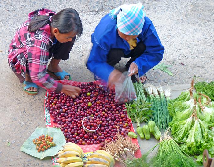 Mae Salong Marché Ethnique
