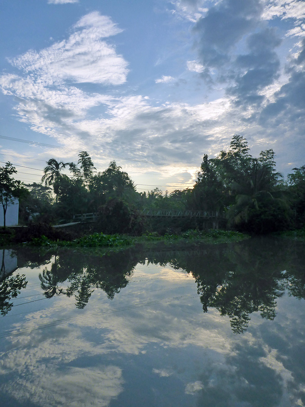 Delta-Mekong-Paysage