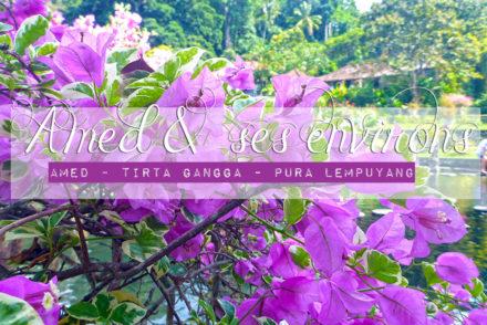 Ahmed et ses environs - Tirta Gangga et Pura Lempuyang, Bali