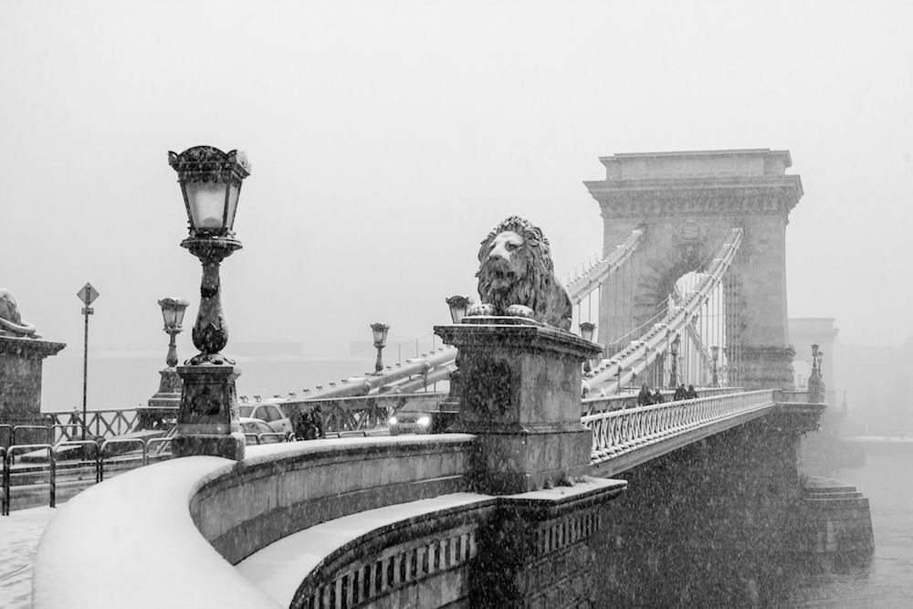 Lion Path Budapest @ Robin TOURNADRE