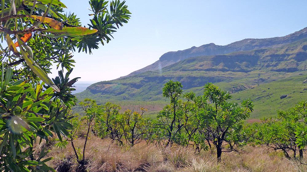 Randonnée dans les gorges du Royal Natal National Park