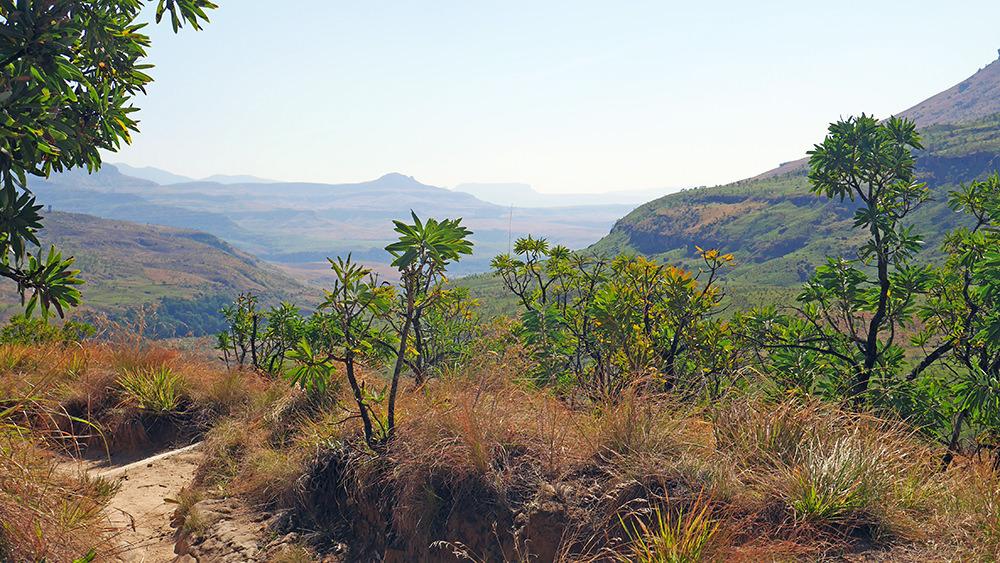 Randonnée dans le Royal Natal National Park.JPG 2
