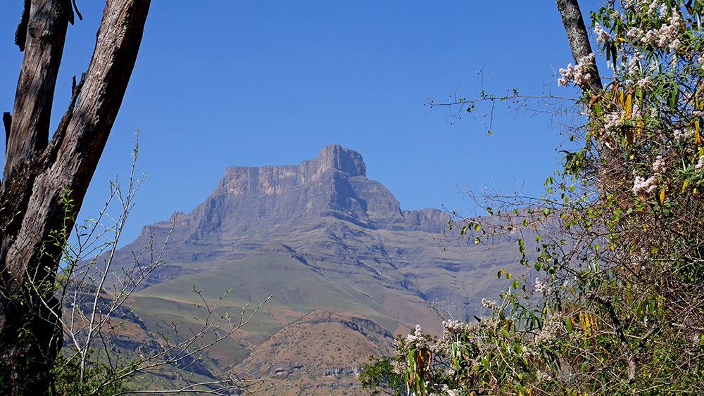 Vue sur le Drakensberg