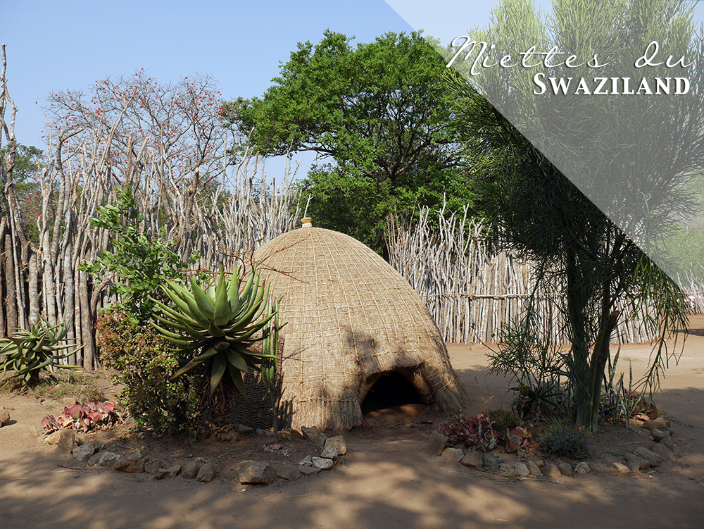 Couv Swaziland