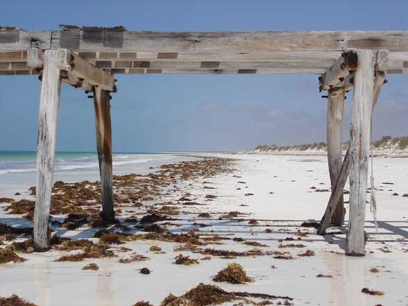 Eucla plage sable blanc, Australie