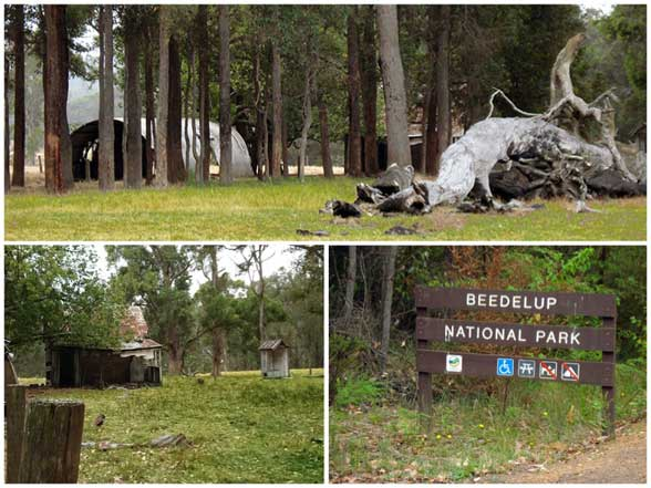 Beedelup National Park
