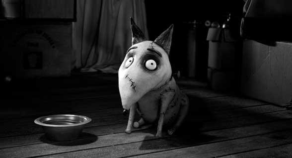 Frankenweenie Tim Burton