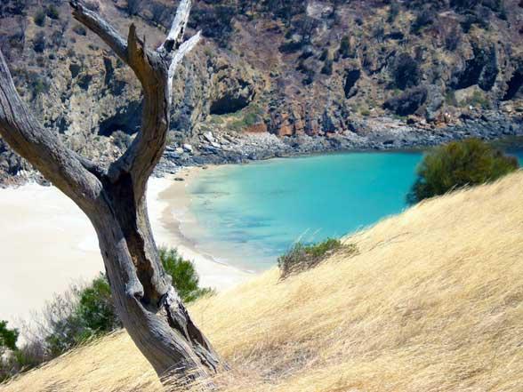 Kangaroo Island Australie Plage
