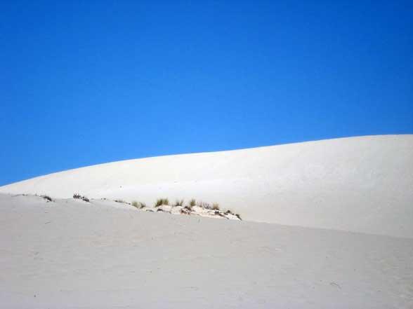 Kangaroo Island Dune