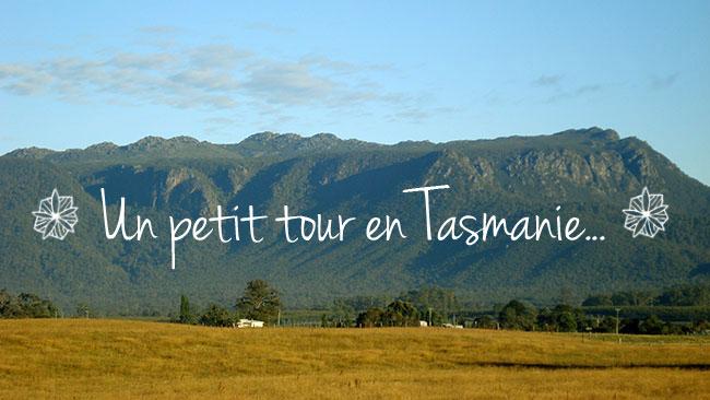 Paysage-Tasmanie