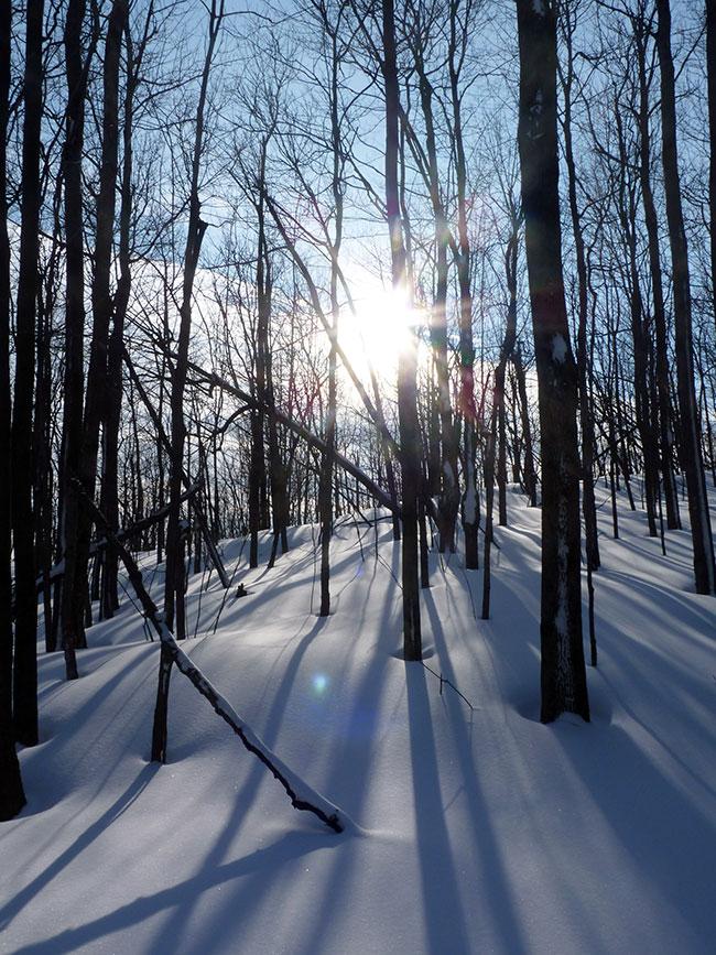 raquette neige hiver
