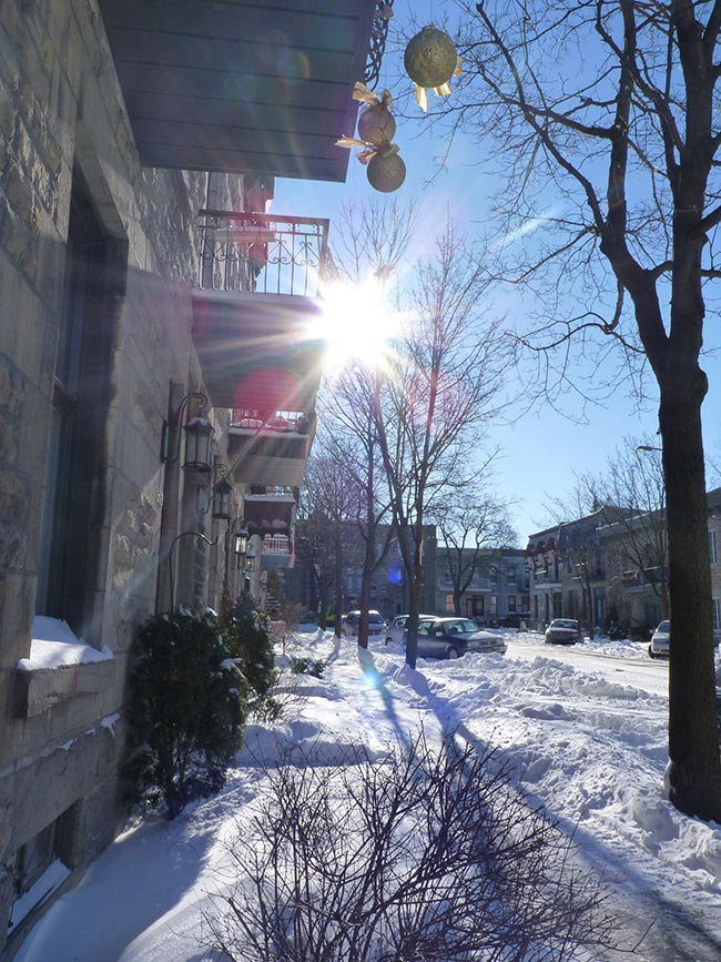 rue neige mile end