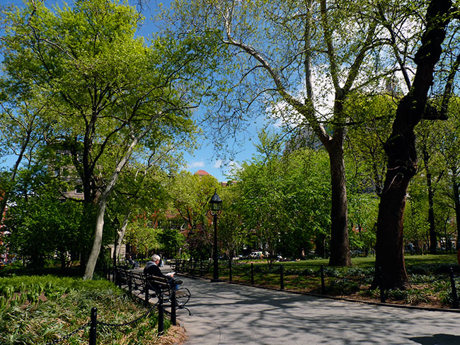 washington square nyc