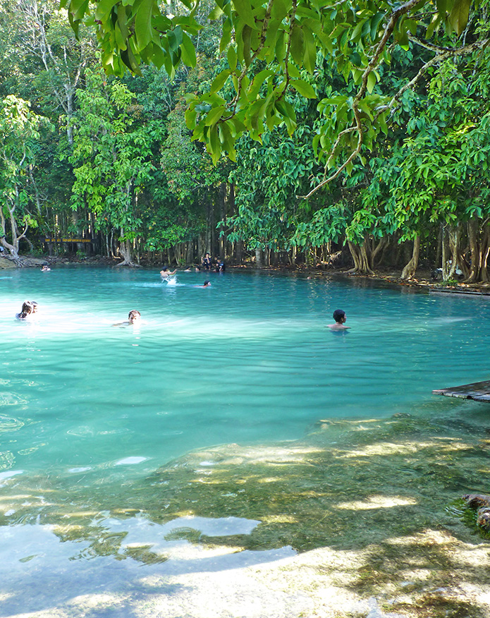 emerald-pool-krabi