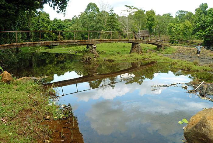Plateau des Bolovens Laos