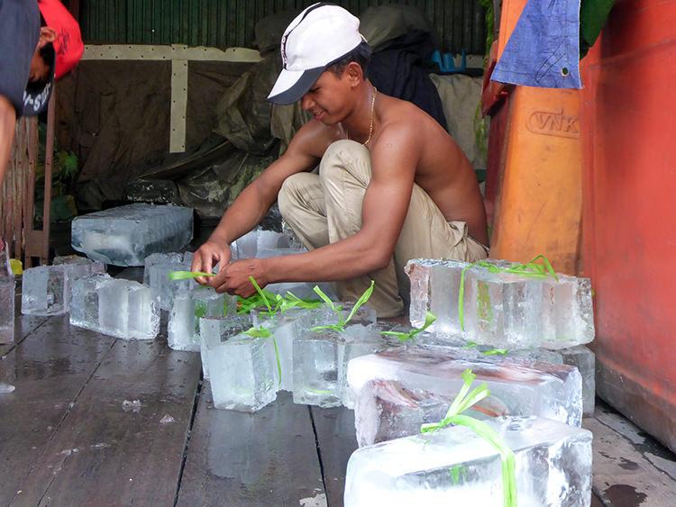 Briseur de glace, Phnom Penh, Cambodge