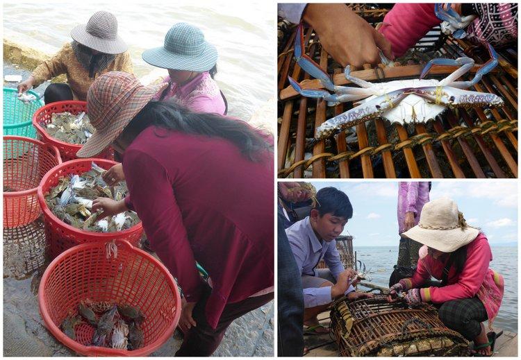 Crabes Kep Cambodge
