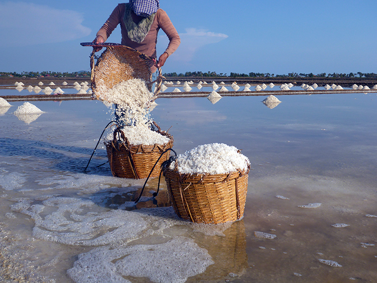 Kep Marais Salants, Cambodge