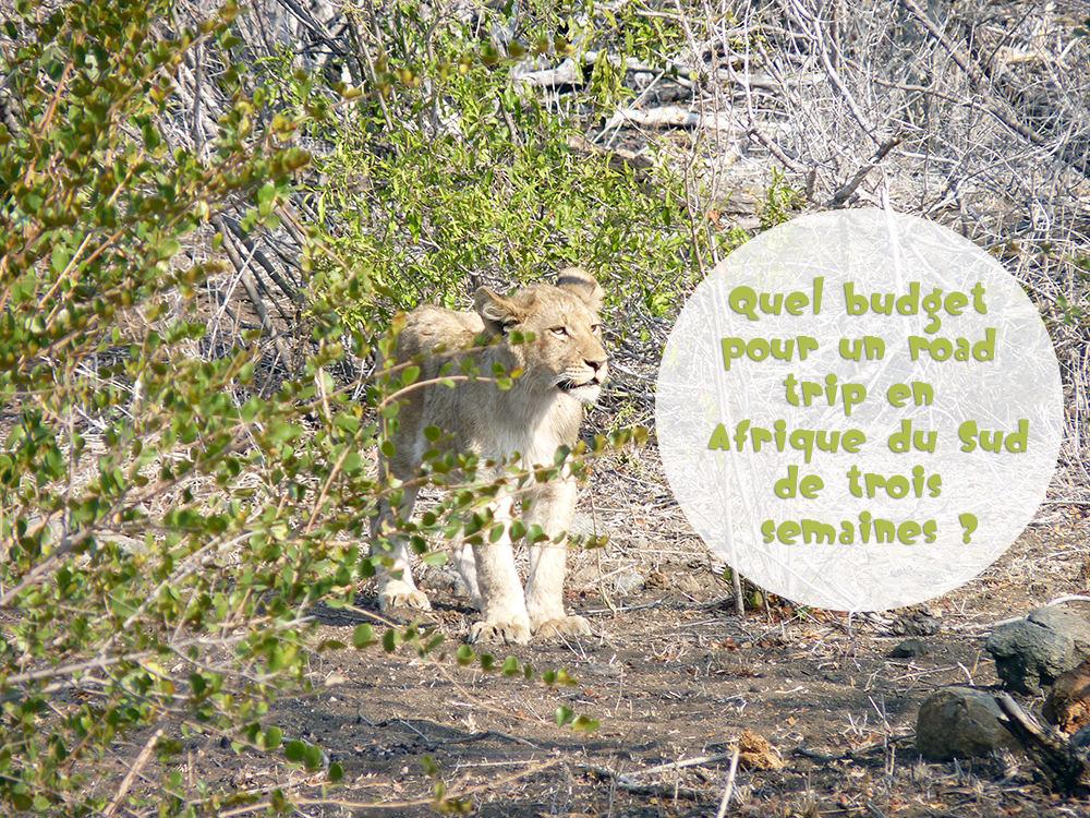 Budget Road Trip Afrique du Sud