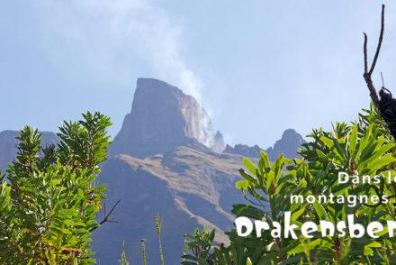 Le Drakenberg - Randonnée - Sentinel Trail