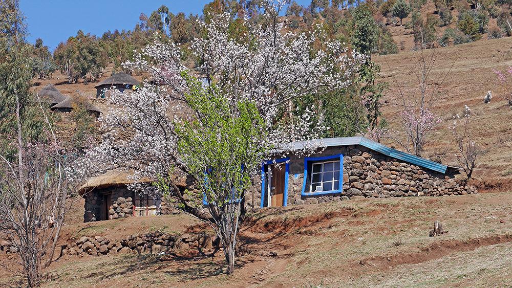 Maison typique Lesotho