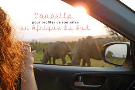 profiter de son safari en afrique du sud