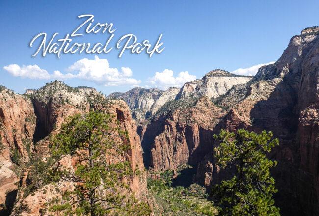 Découvrir Zion National Park pour faire la randonnée de l'Angles Landing Trail lors d'un road trip aux USA.